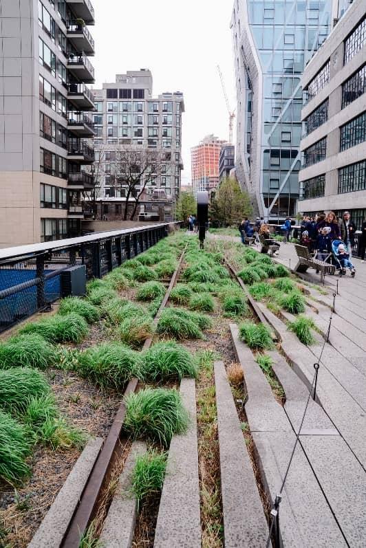 a green corridor in the metropolitan denseness(1)
