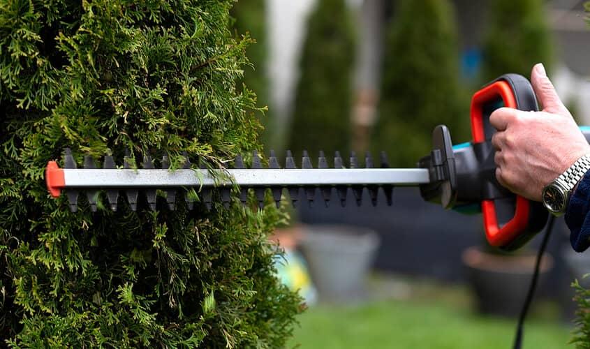 Best Heavy Duty Hedge Trimmer UK