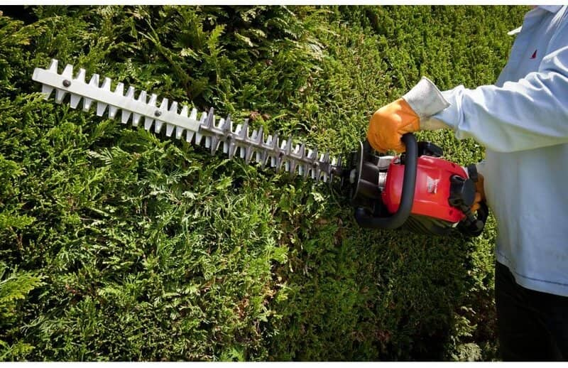 Best Hedge Trimmer For Thick Branches in UK