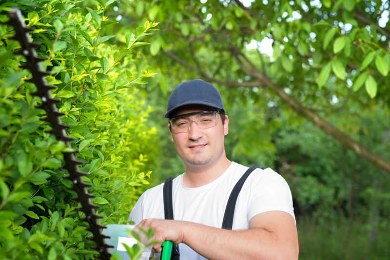 Can a Hedge Trimmer Cut Through Branches