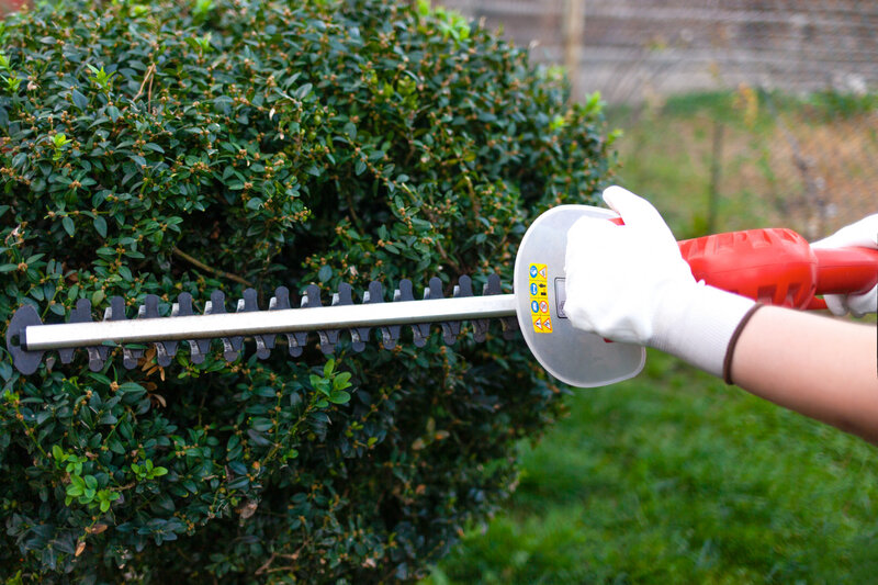 Hedge Cutters Vs Hedge Trimmers