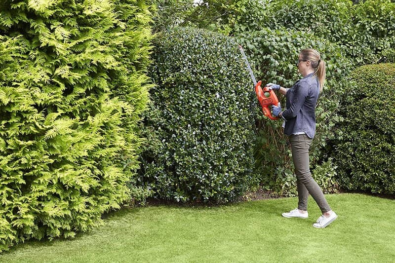 best cheap hedge trimmers UK