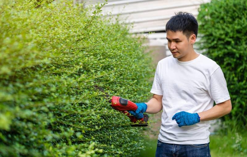 best lightweight hedge trimmer uk